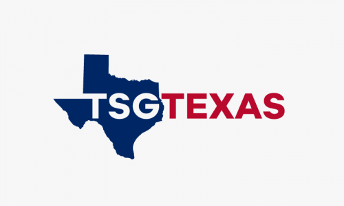 Tsgtexas - Business company name for sale