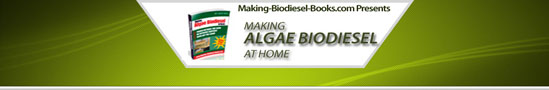 www.making-biodiesel-books.com