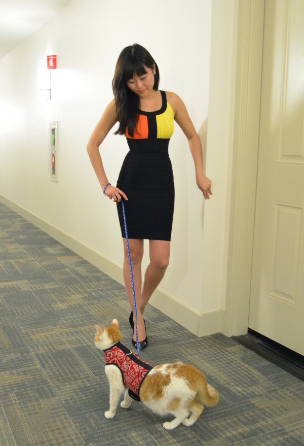 girl wearing tight dress walking cat
