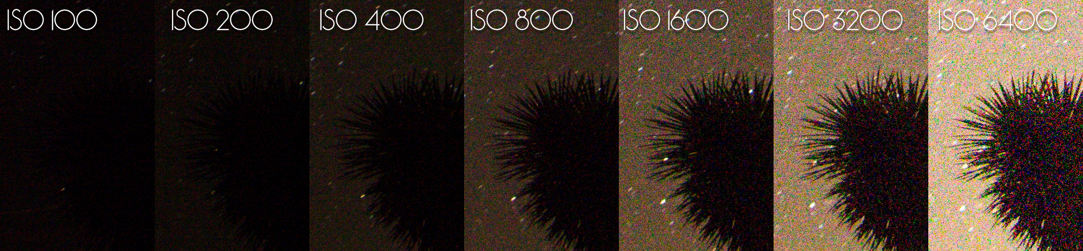 How to Find the Best ISO for Astrophotography: Dynamic Range