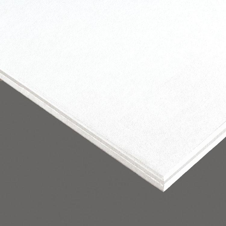1 in x 2 ft x 2 ft Armstrong Calla 9/16 in Square Tegular Panel - 2824BK