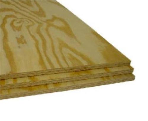 3/8 in x 4 ft x 8 ft CDX Plywood