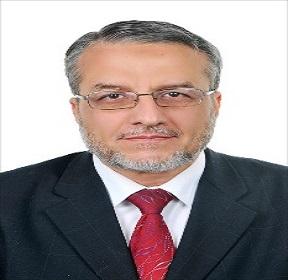 Moustafa Hussein Aly Hassan