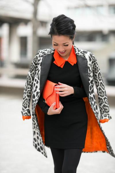 New York :: Snow leopard & Orange accents