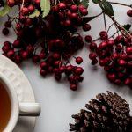 Holiday Blog Header Photo