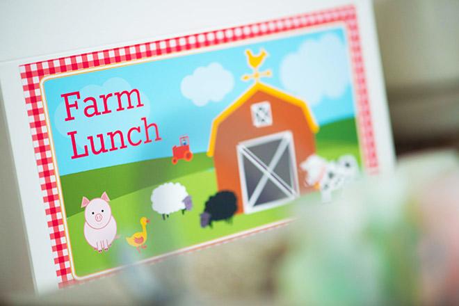Farmyard Party Lunchbox by Love JK