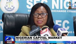 SEC Boss Tells Nigerians to be Calm Over Commissions Reactions to 2019 Elections