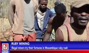 Ruby Mining: Illegal Miners Try their Fortunes in Mozambique