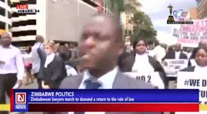 Zimbabwean Lawyers Call for Immediate Order and Return of Rule of Law