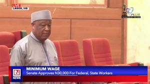 National Minimum Wage Bill Passed into Law by Nigerian Senate