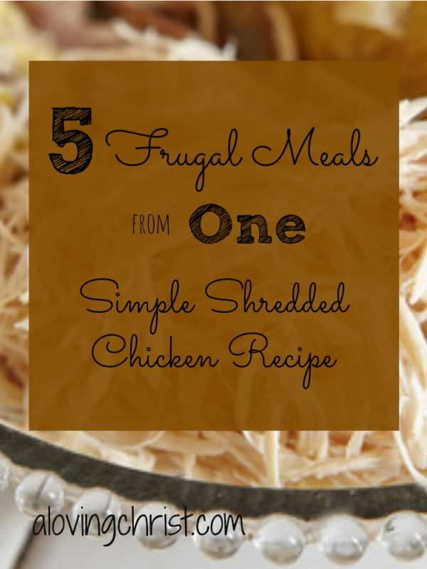 Make any or all of these 5 frugal meals from one shredded chicken recipe for your next retreat or small group gathering. They're yummy for families, too!