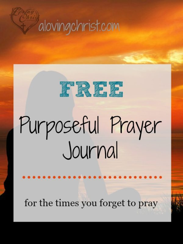 If you're like me, you sometimes forget to pray when you've said you will. This purposeful prayer journal will help you be more focused in your prayer life.