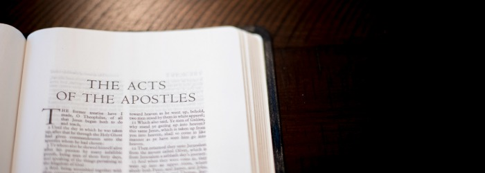 Acts in 30 Days | Beginner's Bible Study and Reading Plan