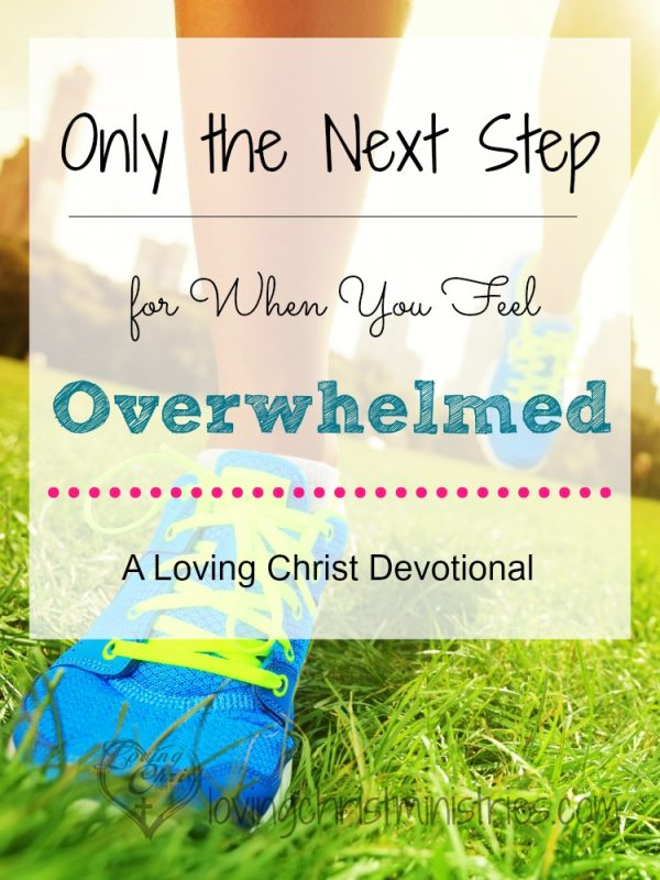 What do you do when you feel overwhelmed? Find out how to look only at the next step so you can move forward in peace again.
