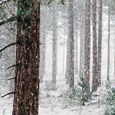 December Prayer Journal Prompts
