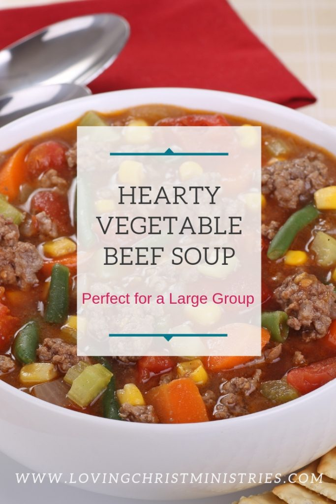 bowl of vegetable beef soup with title text overlay