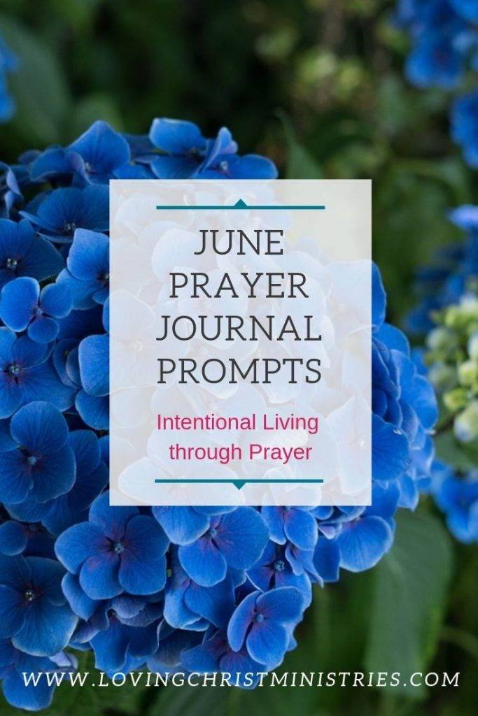 image of blue flowers with title text overlay - June prayer journal prompts