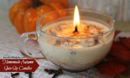 Homemade Autumn Spice Soy Candles