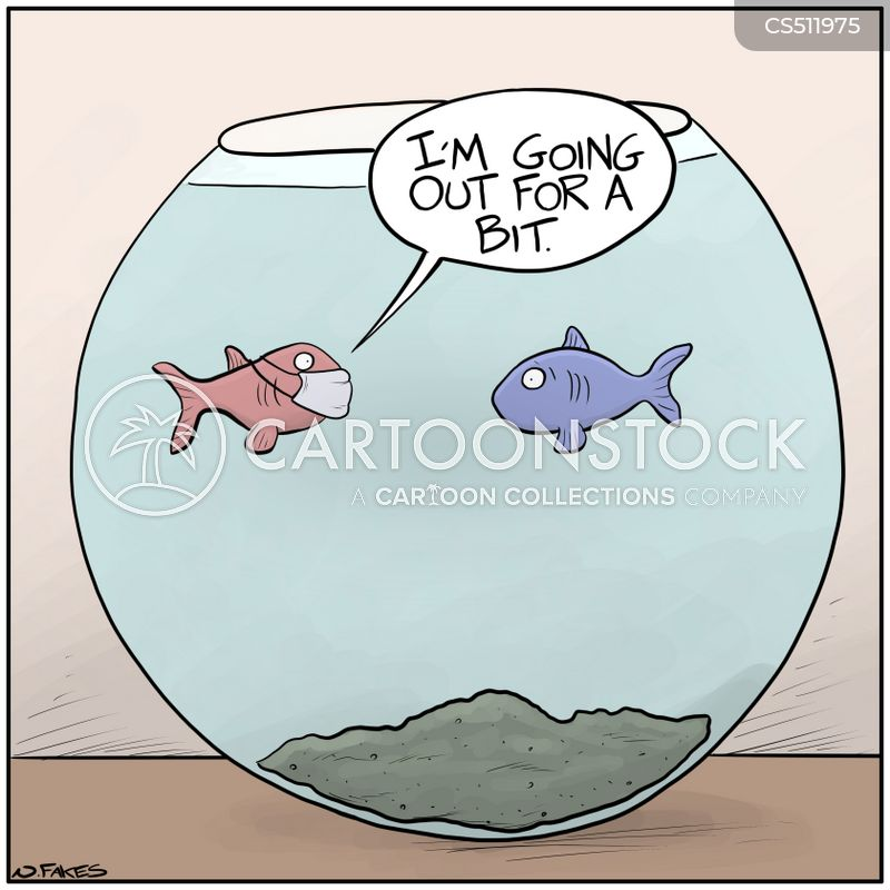 Fish News and Political Cartoons