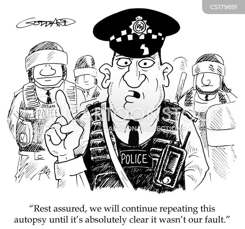 Image result for policing cartoons