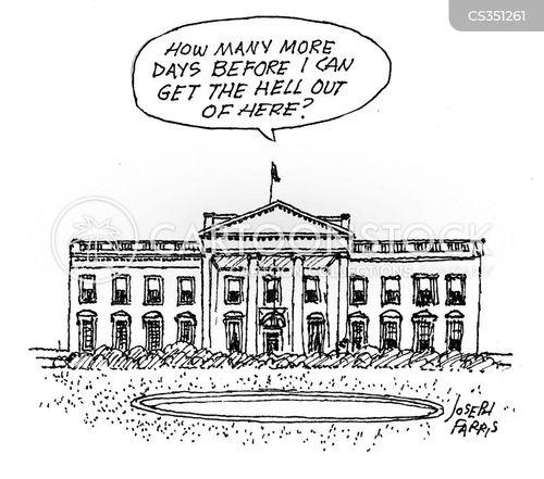 commander-in-chief cartoon
