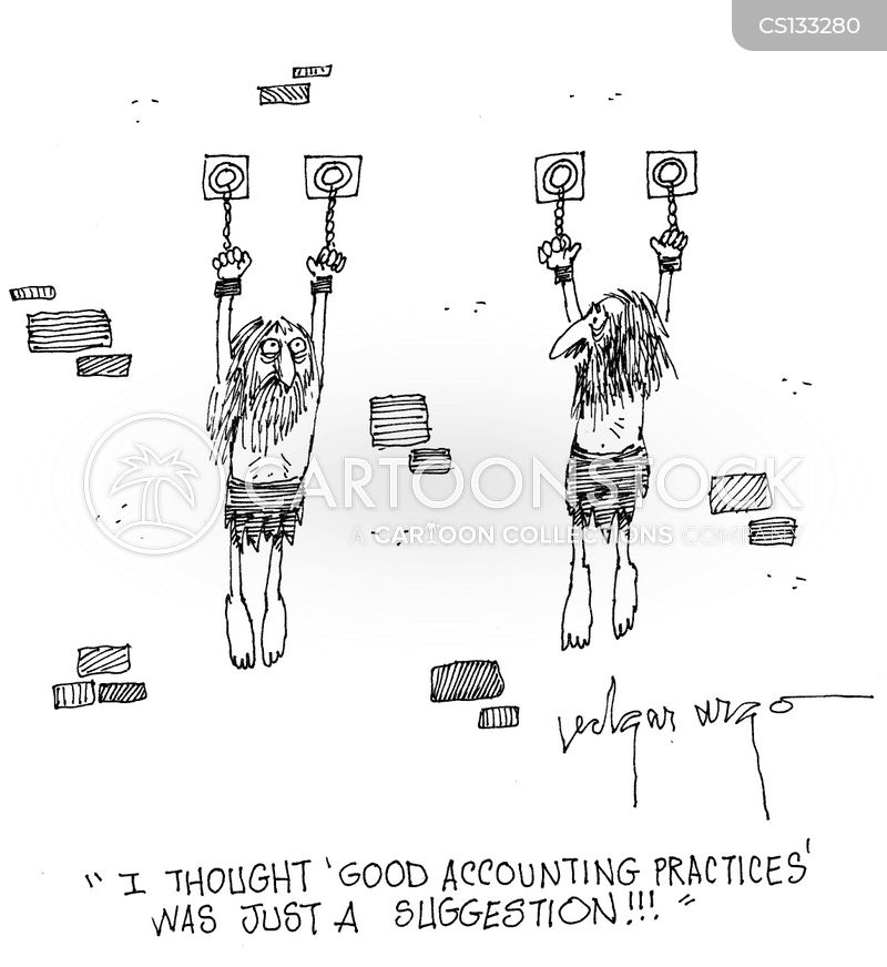 accounting practices cartoon