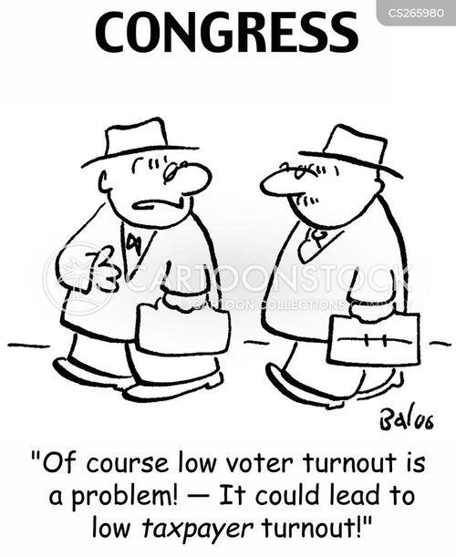 voter turnout cartoon