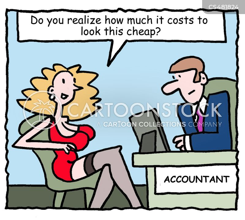 accountancies cartoon