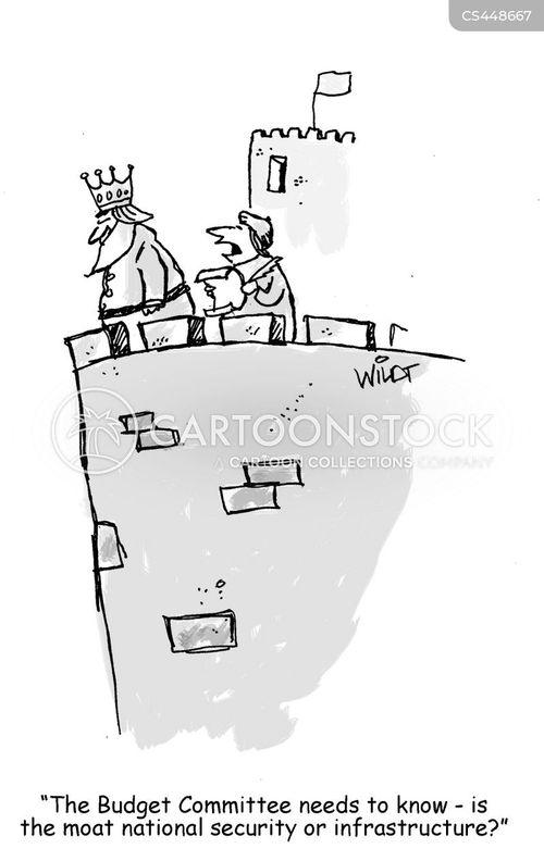 national budgets cartoon