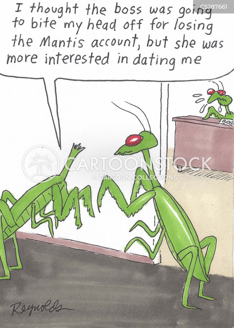 Praying Mantis Cartoons And Comics Funny Pictures From