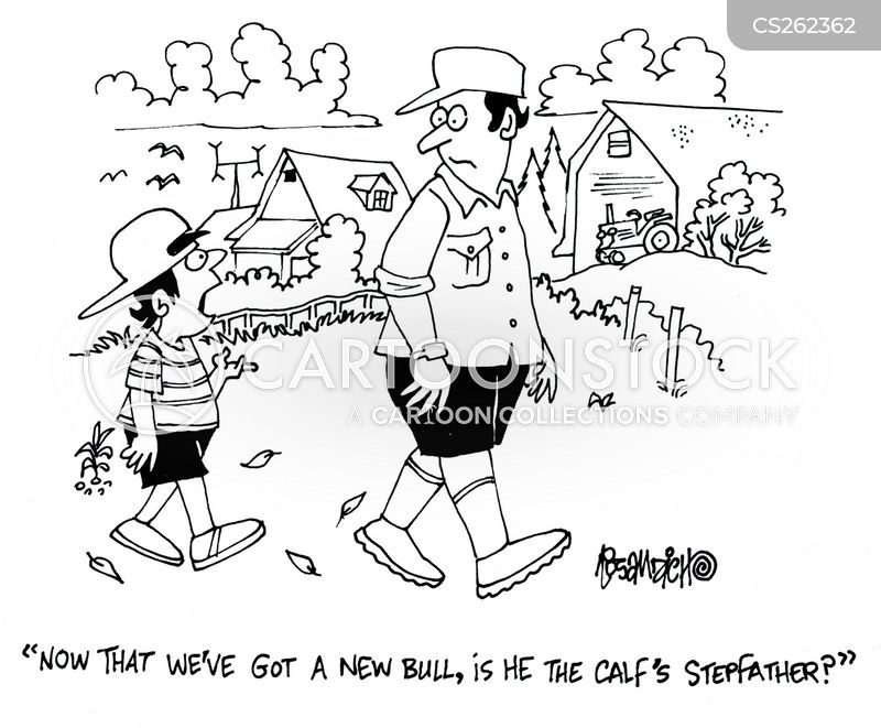 calfs cartoon