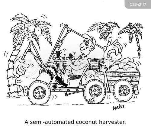 harvest time cartoon