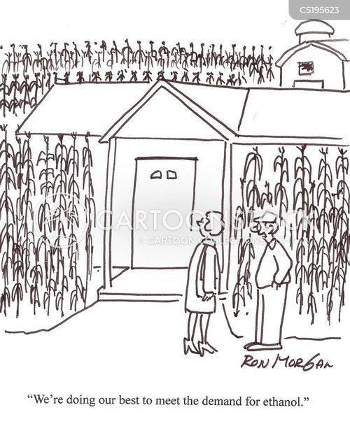 corn crop cartoon