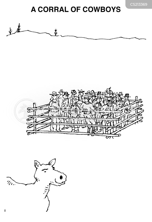 corrals cartoon
