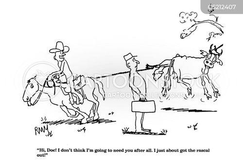 large animal care cartoon