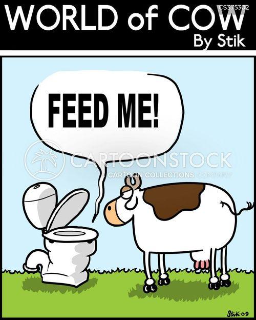 feed me cartoon