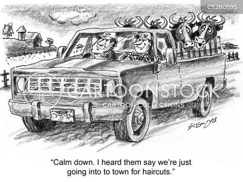 animal ethics cartoon