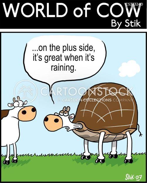 rain coats cartoon