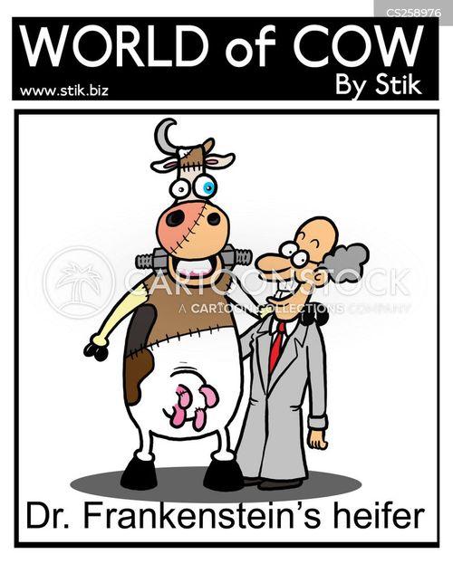 heifer cartoon