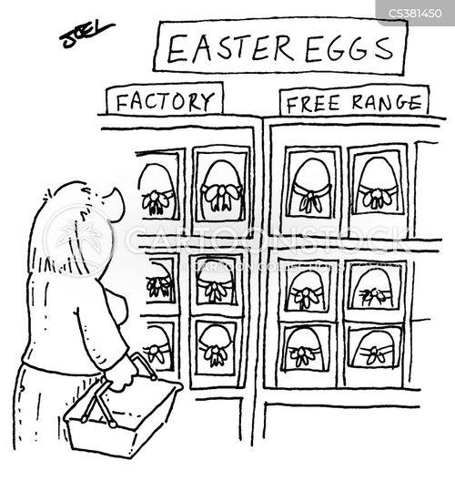 free range eggs cartoon