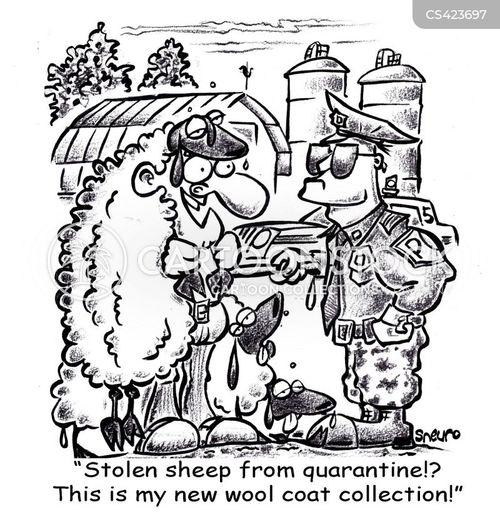 wool coat cartoon
