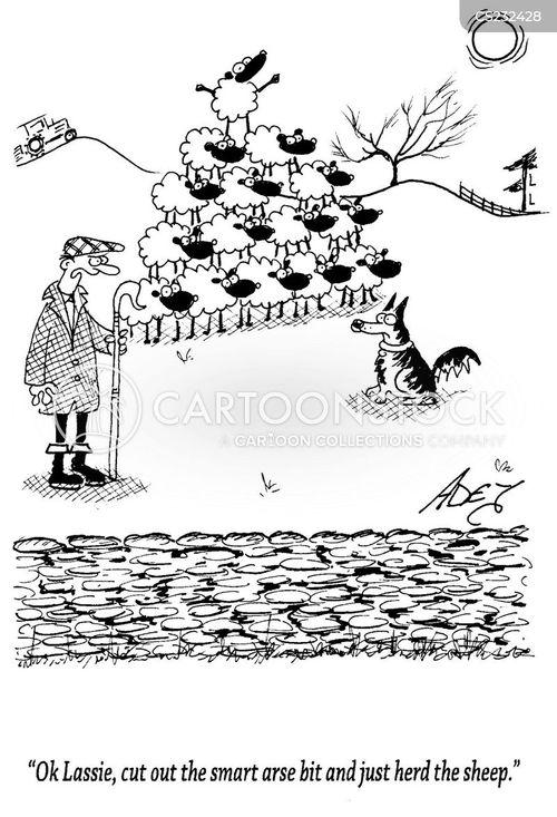 smart arse cartoon