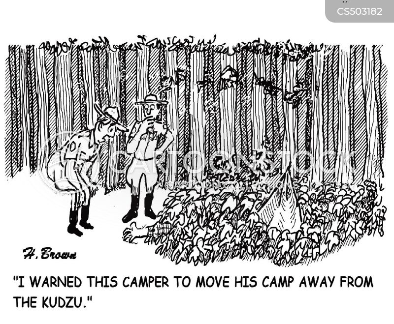 forest rangers cartoon