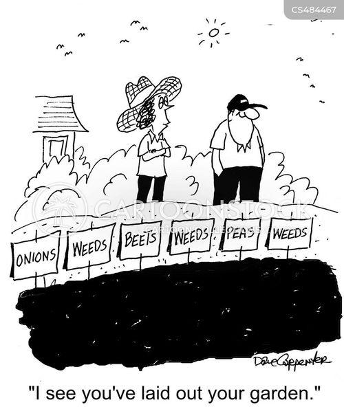 beets cartoon