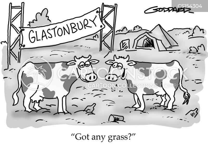 Image result for cartoon + glastonbury festival