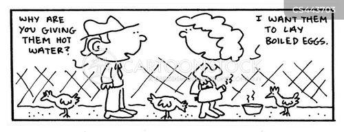 chicken farming cartoon