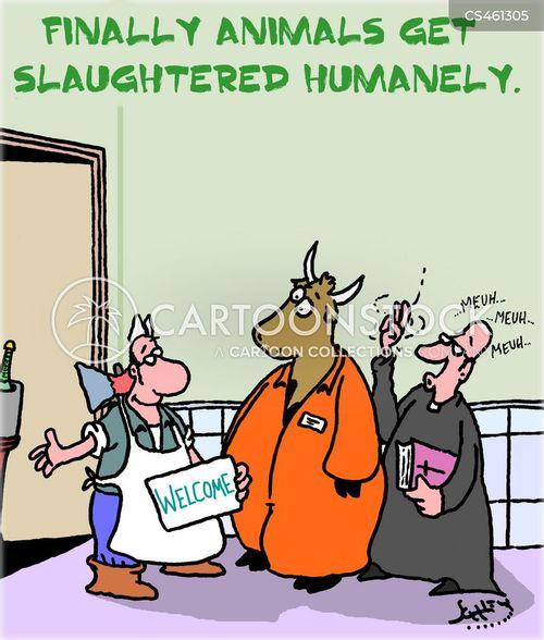 beef farmers cartoon