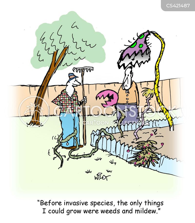 gardening skills cartoons and comics funny pictures from
