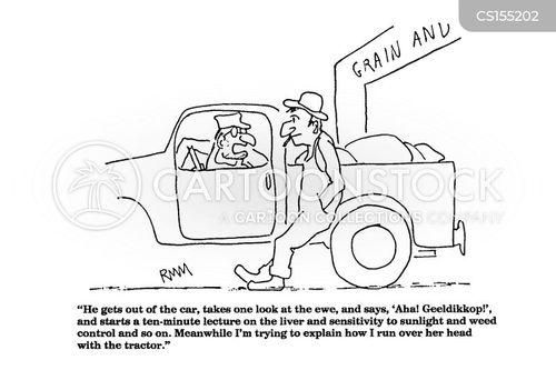 ran over cartoon