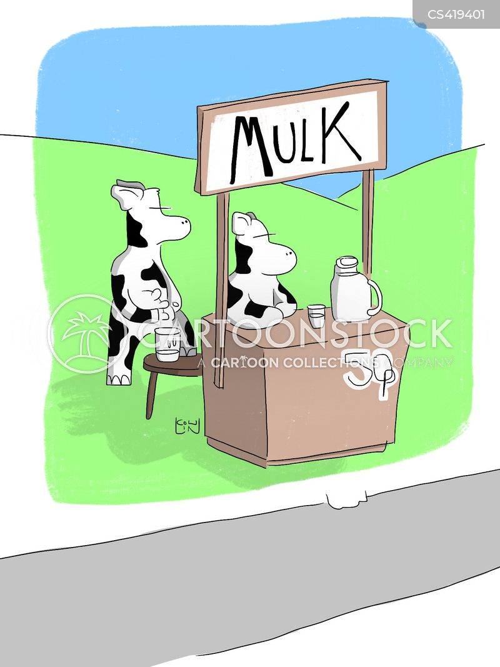 dairy production cartoon